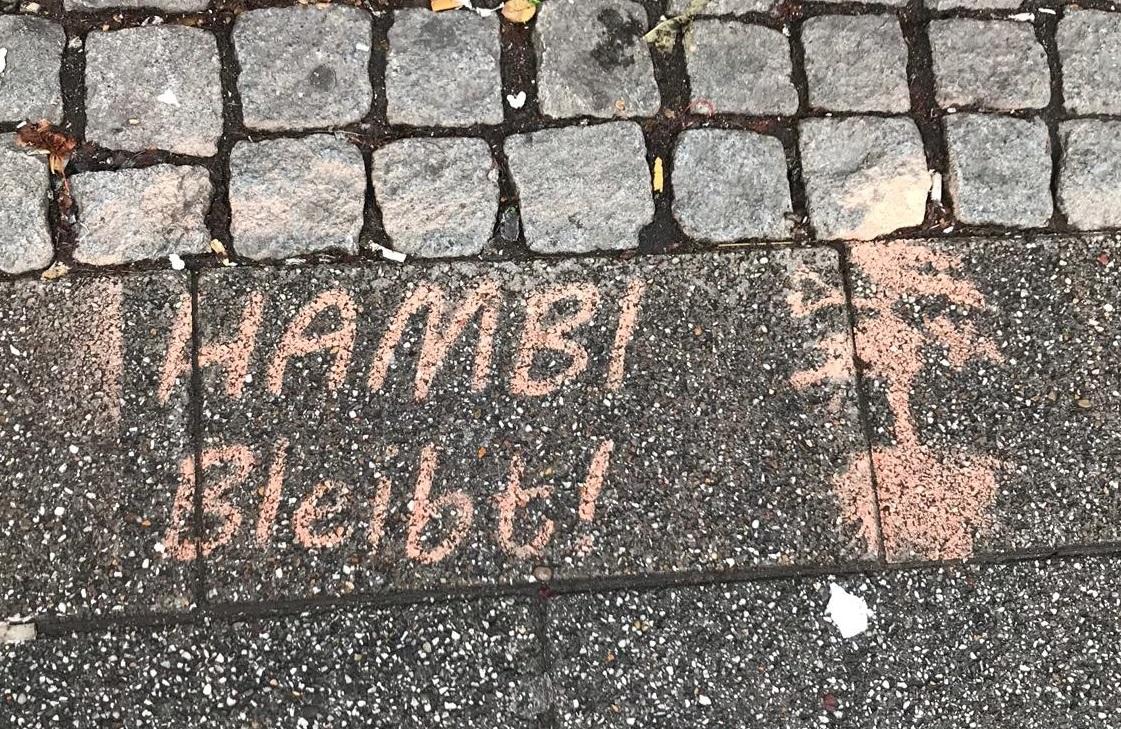 Environmental Activism in the Bremen Viertel